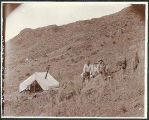 Prospectors' blacksmithing camp in hills near Caballo Road or Palomas Gap, New Mexico