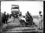 Track laying preparatory to driving last spike on Santa Fe Central Railway
