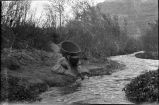 Havasupai woman with burden basket at stream, Arizona