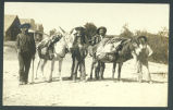 Men and boys with pack mules
