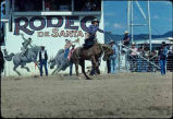 Santa Fe Rodeo, Santa Fe, New Mexico