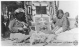 """Carding Wool to be used in Navajo Indian Rug Weaving"""