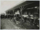 Peach packing plant, Carlsbad Irrigation Project on the Pecos River, New Mexico