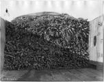 Truckload of carrots, W.M. Drinkard farm near Portales, New Mexico