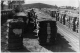 Bales of cotton ready for shipment, Artesia, New Mexico