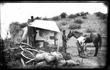 Portable blacksmith shop in tent near the mining towns of Kingston or Hillsboro, New Mexico