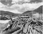 Logs for milling lumber, Denton Mill in Sacramento Mountains, New Mexico