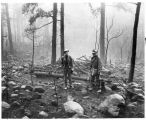 Forest Service personnel inspect damage on Capitan Mountain, Lincoln National Forest which burned...