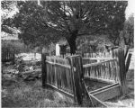 Old cemetery in the mining town of Kingston, New Mexico