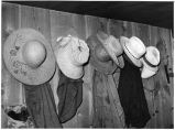 Farmers' hats seen in the house of homesteader George Hutton, Pie Town, New Mexico