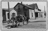 Burros loaded with firewood on College Street (Old Santa Fe Trail), Santa Fe, New Mexico