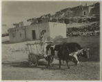 Ox cart, Laguna Pueblo, New Mexico