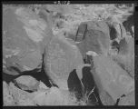 """Indian petroglyphs near Alamogorodo, New Mexico, believed by science to be made between 600..."