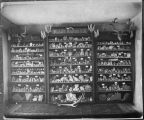 Doctor Haskell's cabinet of mineral specimens, Chloride, New Mexico