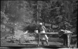 Cooking in camp, Los Alamos Ranch School, Los Alamos, New Mexico