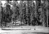 Golf course, Cloudcroft, New Mexico