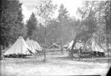 Tents of Company B, Camp Hughey, Cloudcroft, New Mexico