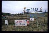 Roadside signs, Weed, New Mexico