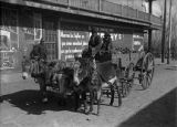 Team of donkeys pulling wagon load of firewood, Plaza, Las Vegas, New Mexico