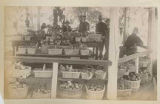 Fruit and vegetable vendors on Plaza bandstand, Santa Fe, New Mexico