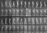Lateral Sclerosis, Walking, from the series, Animal Locomotion, 1884-1886