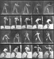 Baseball, Catching and Throwing, from the series, Animal Locomotion, 1884-1886