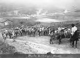 Mules de charge (Minas) (Pack Mules, Minas), from the album, South American Views; 44 photographs