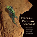 Traces of a Permian Seacoast: Prehistoric Trackways National Monument