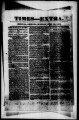 The Mesilla Times 1861-07-29