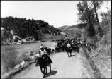 Troy King leading cattle drive