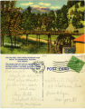 Old Mill Ruidoso Postcard