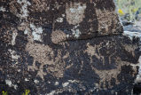 Multiple of Petroglyphs on a Rock Face