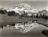 View of Mt. Rainier from Spray Park, Mount Rainier National Park