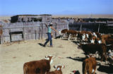 Frank Ortiz at Cordova Ranch