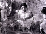 Hat Makers in Calkini Yucatan, 1961