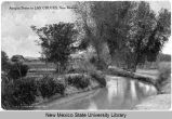 Acequia scene in Las Cruces, New Mexico