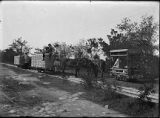 Mule drawn rail car on henequen (sisal) plantation near Merida, Mexico