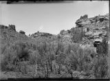 General view of ruins at head of Ruin Canyon, McElmo Canyon, Colorado