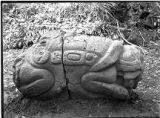 Double headed animal zoomorph after cleaning and repair, Quirigua, Guatemala