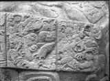 Zoomorph B, detail of glyph band near end, after cleaning, Quirigua, Guatemala