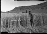 Farmer in field near Las Vegas, New Mexico