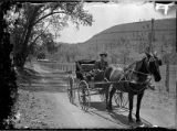 Horse and buggy in Pecos Canyon, New Mexico