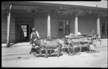 Wood vendors wagon pulled by burros on Grant Avenue, Santa Fe, New Mexico