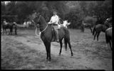 Young man on horseback, Young Ranch, New Mexico