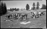 Los Alamos Ranch School students unpacking on camping trip, Los Alamos, New Mexico
