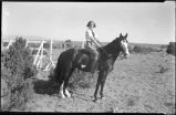 Young woman on show horse, New Mexico