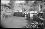 Sluice gate on irrigation ditch, New Mexico