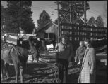 """Packing a horse"", Los Alamos Ranch School, Los Alamos, New Mexico"