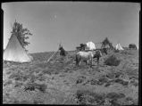 Apache camp, New Mexico