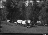 Bear hunters camp, New Mexico